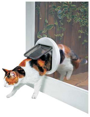 Cat Flap Fitter Grappenhall